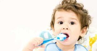 أفكار لوجبات صحية لطفلك بعمر 19 شهرًا