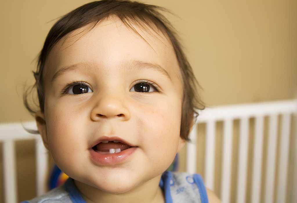 الأسنان القواطع السفلية الجانبية