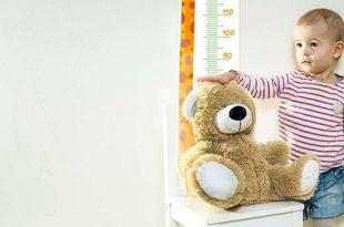 جدول متوسط وزن طفلك وطوله – من 12 إلى 24 أشهر