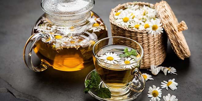 تناول شاي البابونج أثناء الحمل – هل هو آمن؟