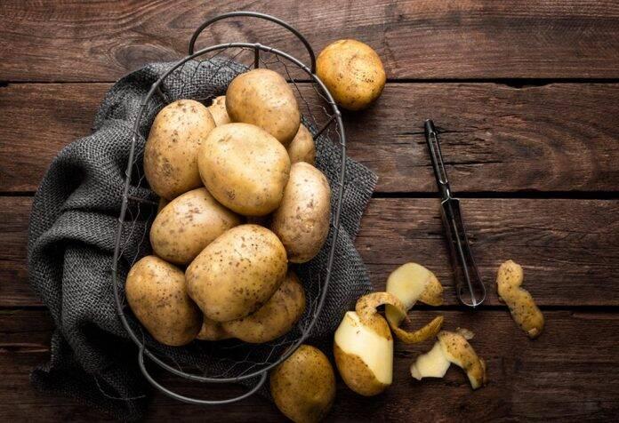 البطاطس المتبرعمة