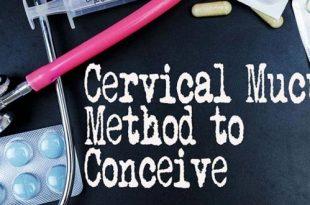 """أسباب حالة """"عدائية مخاط عنق الرحم"""" التي يمكن أن تؤثر على قدرتك على الحمل"""