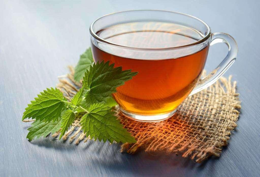 شاي النعناع بالزنجبيل والهيل