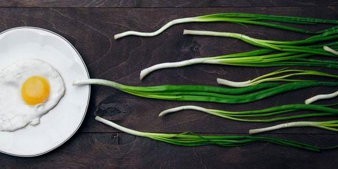 أفضل 10 أطعمة يمكن أن تعزز الخصوبة