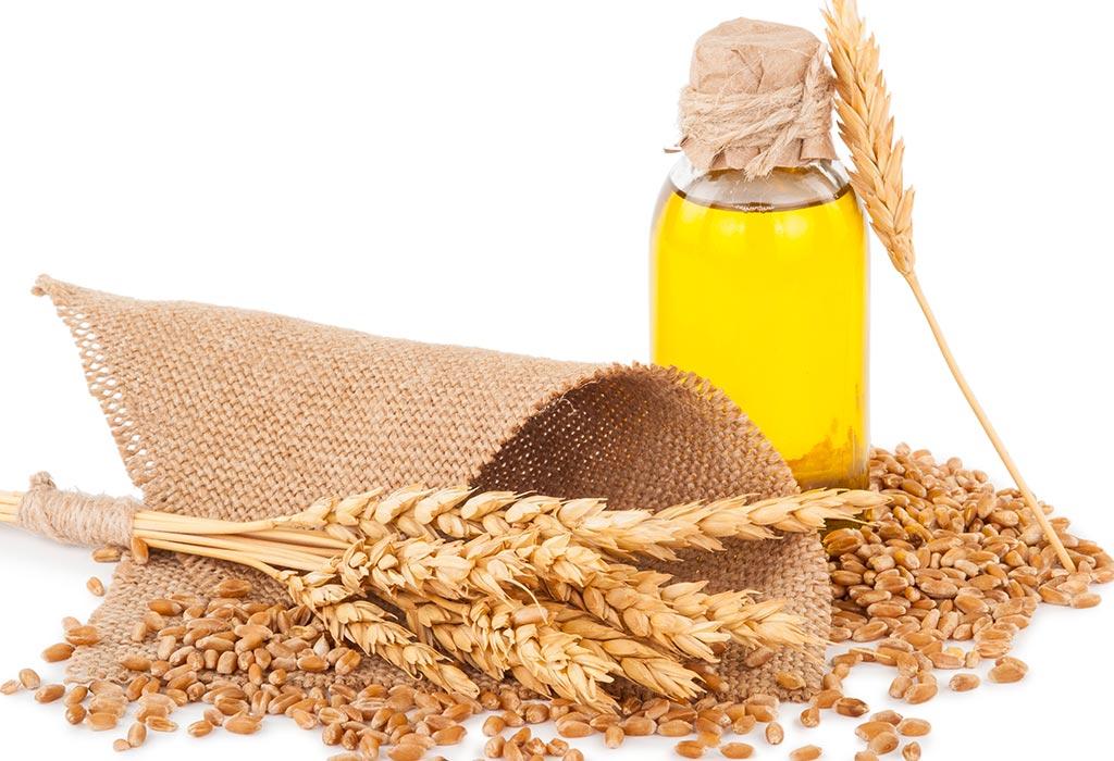 معجزة جنين القمح