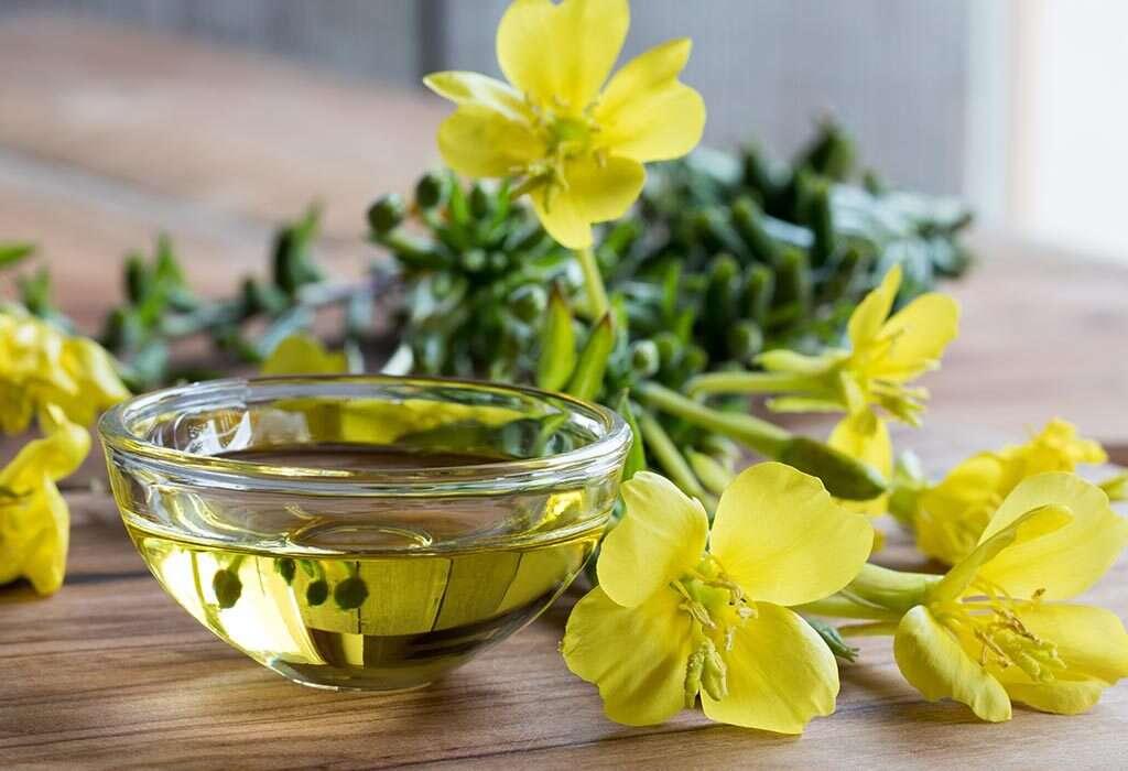 زهرة الربيع المسائية (Evening Primrose)
