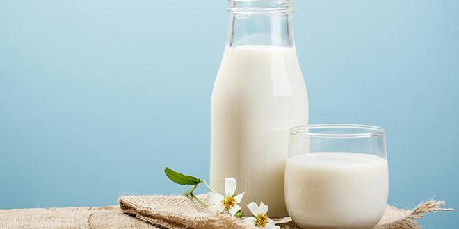 شرب الحليب أثناء الحمل - هل هو جيد؟