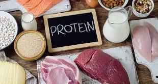 تناول البروتينات أثناء الحمل